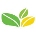 The Greenoffice